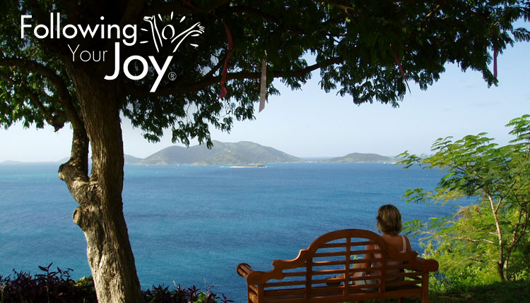 'Following Your Joy' Blog